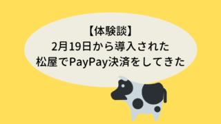 【体験談】2月19日から導入された松屋でPayPay決済をしてきた